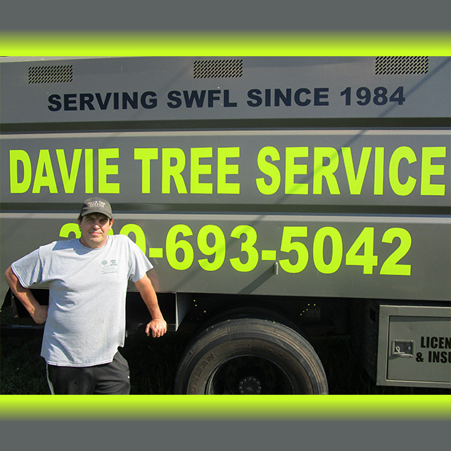 Davie Tree Service Cape Coral